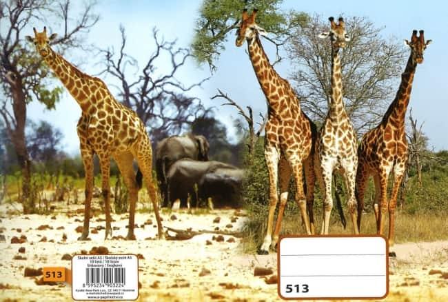 sešit 523, A5, 20 listů, linkovaný 12mm, motiv žirafy