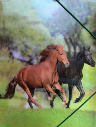 Desky na spisy/výkresy s gumou, motiv koně,3D efekt