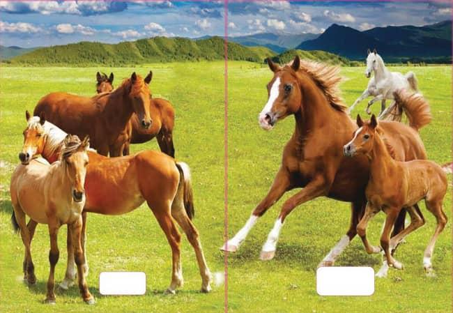 sešit 520 s 3D motivem ,A5, 20 listů,bez linek, motiv koně