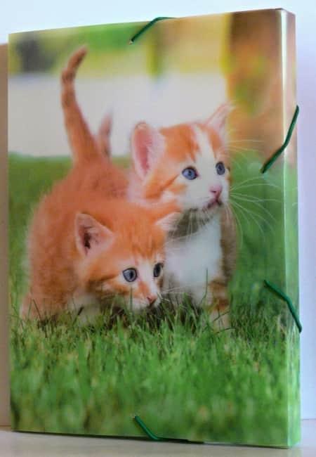 Krabice na sešity A4 s gumou,motiv koťata,3D efekt