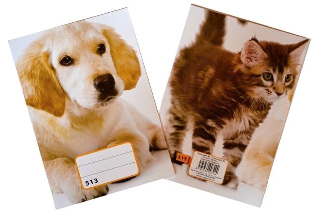 sešit 513,  A5, 10 listů, linkovaný 12 mm, motiv štěně
