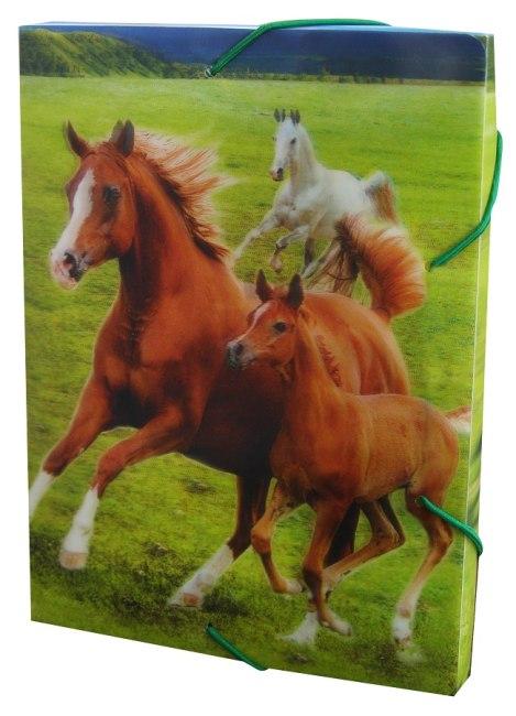 Krabice na sešity s gumou A5,motiv koně,3D efekt