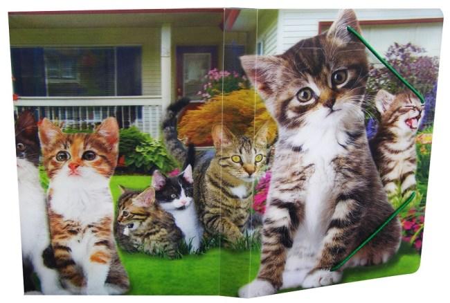 Krabice na sešity s gumou A5,motiv kočky,3D efekt