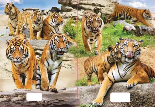 sešit 544 s 3D motivem, A5, 40 listů,linkovaný, motiv tygři
