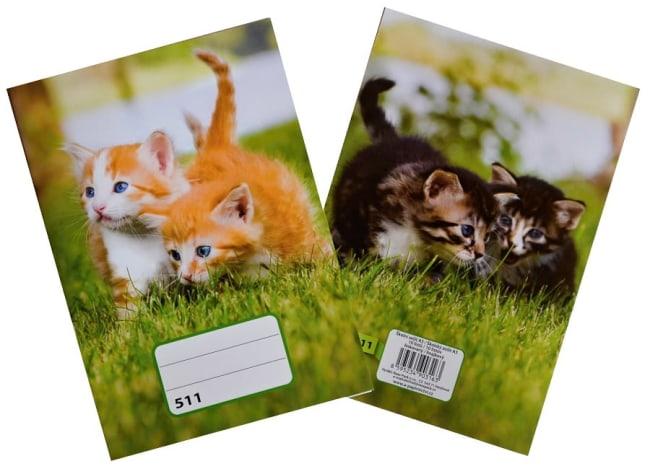 sešit 511, A5, 10 listů, linkovaný 20 mm,motiv koťata