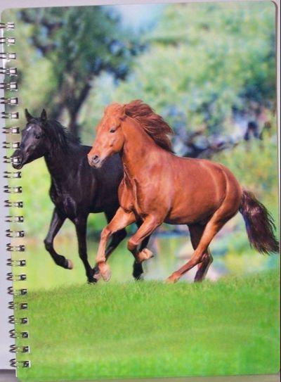 Sešit linkovaný,motiv koně,3D efekt,kroužková vazba