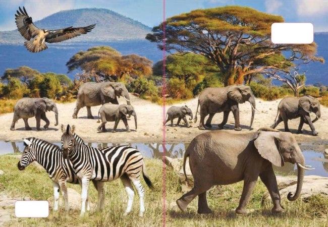 sešit 544 s 3D motivem, A5, 40 listů,linkovaný, motiv sloni