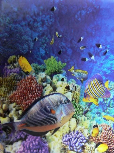 Katalogová kniha,20listů,motiv akvarium,3D efekt