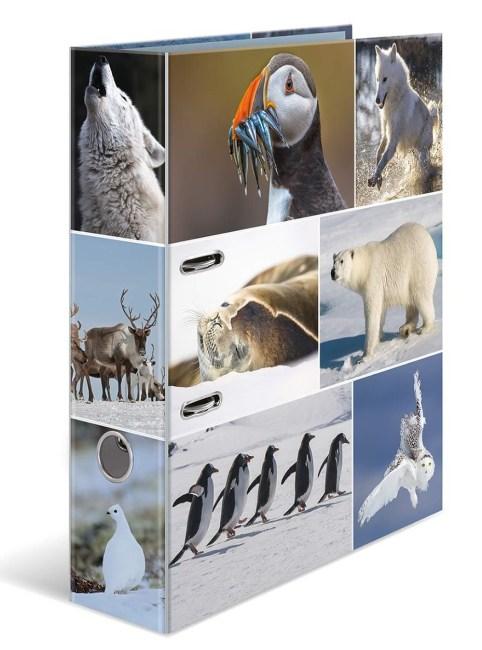 Designový pákový pořadač A4 7cm karton motiv Animals- polární